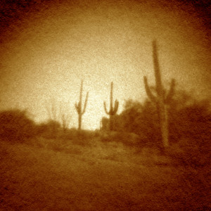 SaguaroWay