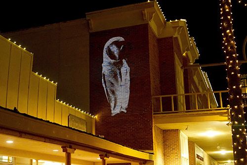 "Owl on Building, part of the Scottsdale Gallery Association April ArtWalk ""Art in Motion: A Video Experience"""