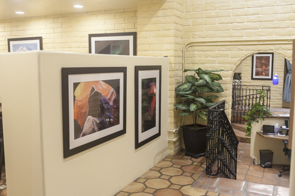 Photography in Gallery - Scottsdale Gallery AssociationScottsdale